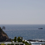 The Research Vessel Pacific Storm leaves Acapulco for the trip home