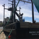 Pacific Storm Stern