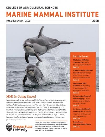 MMI Newsletter cover 2020