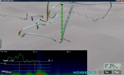 Trackplot Visualization of Humpback Whale Underwater Foraging Behavior